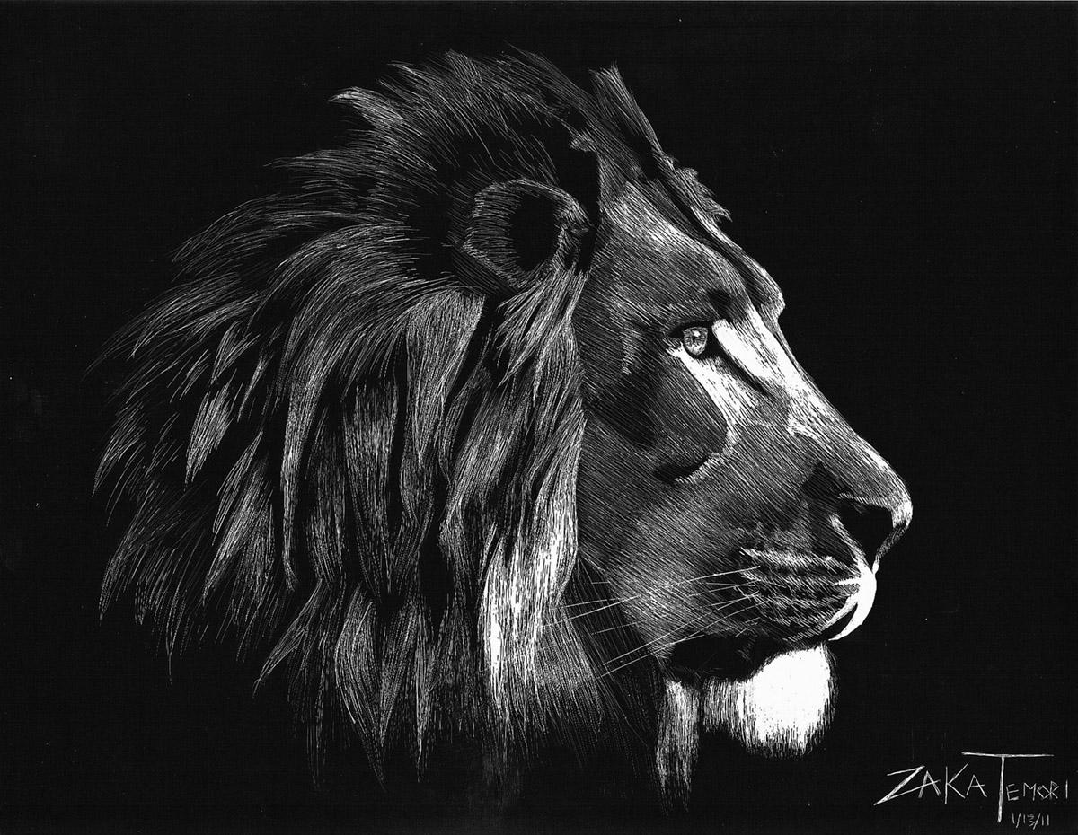 fine art sketch of a lion