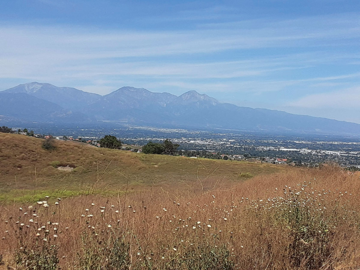 photo of Chino, California from a hiking trail. The San Gabriel mountains are in the background.